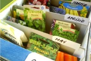 Organizarea semintelor pentru gradina