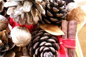 Organizarea dupa sarbatorile de iarna - activitati in ianuarie