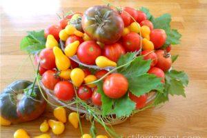 Grădina în septembrie - ce e de făcut
