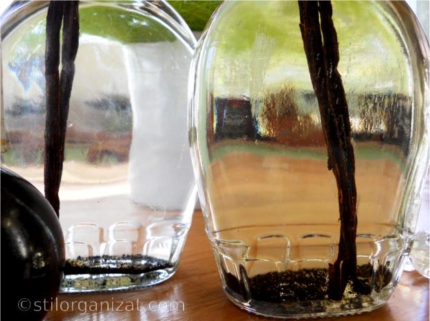 sticle cu vanilie