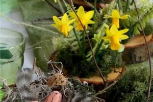 Masă de primăvară timpurie