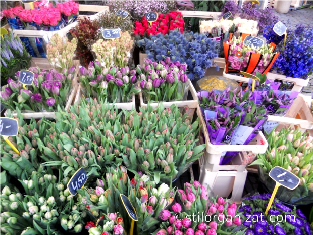 Utrecht market 5