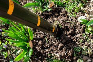 Plantări ușoare în grădină