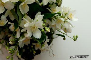 Buchete din grădină - iasomie
