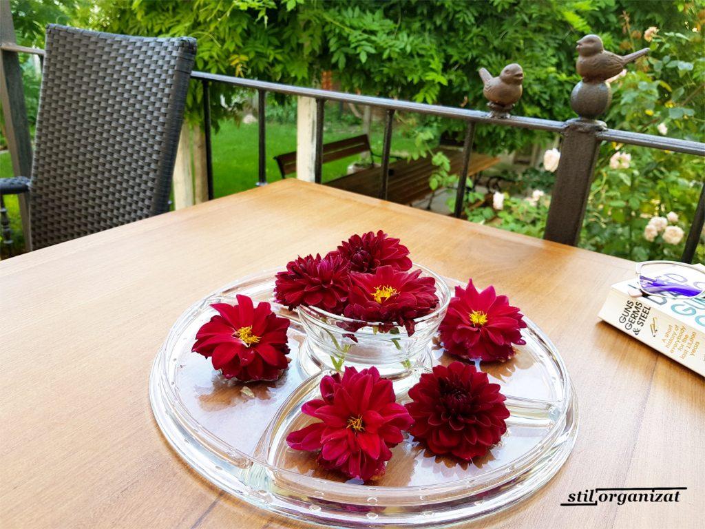 dalii rosii pe masa