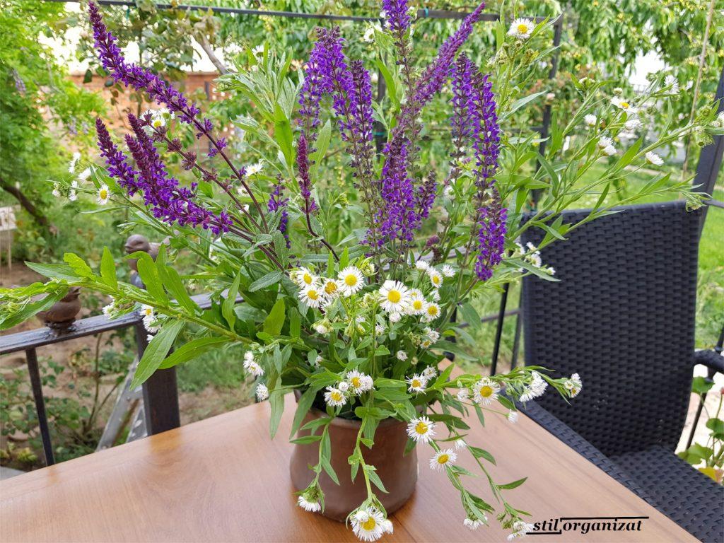 plante suport pentru buchet