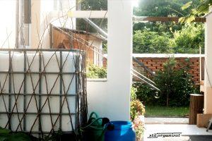 Colectarea apei de ploaie - grădina sustenabilă