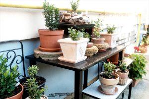 Obiecte vechi recondiționate pentru grădină
